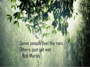 green leaves in rain rainy quotation wallpapers