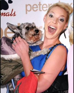 Katherine Heigl's attended a charity event with her cute pet dog Romeo ...