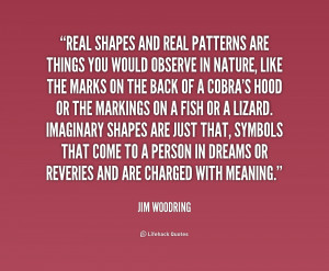 ... -Jim-Woodring-real-shapes-and-real-patterns-are-things-216085_1.png