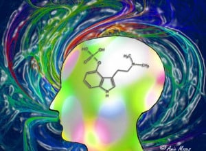 ... of Consciousness-Psilocybin's Gateway to the Mind & Well-being