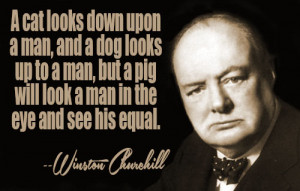 ... quotes by subject browse quotes by author winston churchill quotes ii