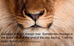 20 great quotes on overcoming obstacles more life quotes lion quotes ...