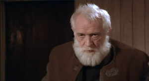 imo Richard Harris' beard from 'The Field' (1990) is perfect. It is ...