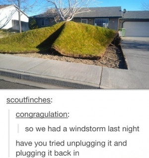 funny picture storm grass wanna joke.com