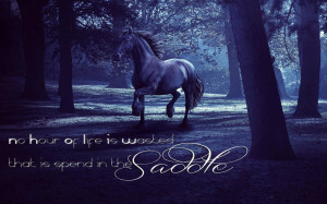 Horse & Quote wallpaper