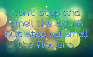 don't stop and smell the skunk but stop ad smell the flowers.