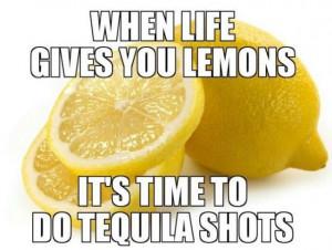 MEMES 2014 When Life Gives You Lemons