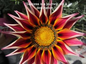 Motivation photo quotes - Beautiful Flower Photos