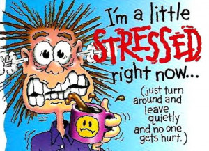 Funny Stressed Out Quotes. QuotesGram
