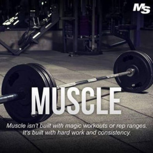 Hard work + Consistency = Muscle