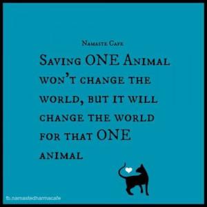 Saving ONE animal won't change the world, but it will change the world ...