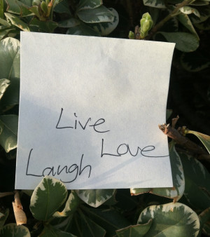 Quotes To Live By: An Unexpected Gift