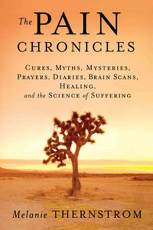 ... Prayers, Diaries, Brain Scans, Healing, and the Science of Suffering
