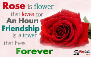"""Friendship and Flower Quote and You Like This Friend Quote . """"Rose ..."""
