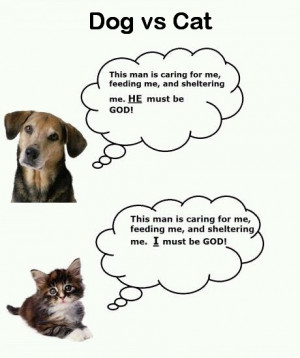 Funny Cat And Dog Jokes