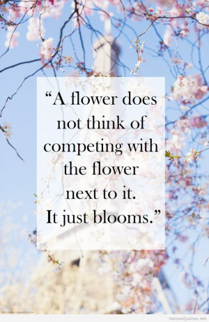 Quotes Of Wisdom For Men Hd Genius Quotes Part Wallpaper Hd