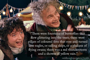 Lord of the Rings Quotes..Gandalf's famous fireworks :)