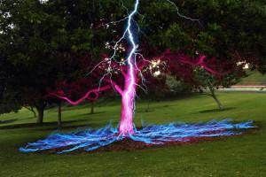 Lighting hitting tree