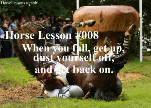 horse lesson nr. 8