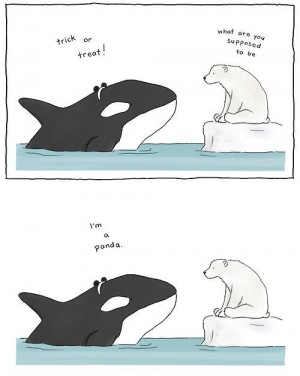 Funny Picture - Trick or Treat Polar Bear