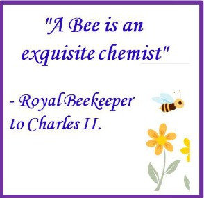 bee quotes about wonderful and amazing bees