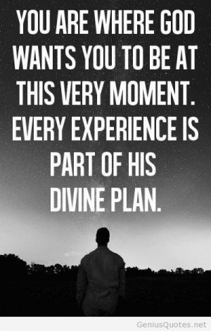 Life experience divine plan quote