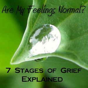 ... Published – Are My Feelings Normal? The 7 Stages of Grief Explained