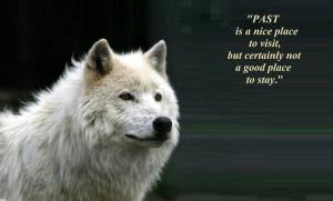 wolf spirit mythical black wild animal HD Wallpaper