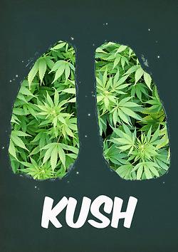 Marijuana Mary Jane Quotes Pic #20