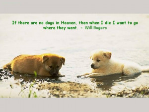 If There Are No Dogs In Heaven