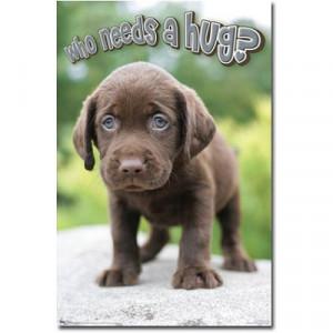 Puppy (Who Needs a Hug?) Art Poster Print CHECK PRICE