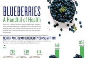 blueberry%20infographic_0.jpg