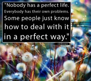 Nobody Has Perfect Life...