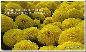Happiness Held In The Seed Happiness Shared Is A The Flower