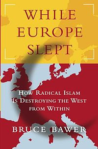 Book cover for While Europe Slept.jpg