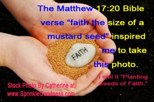 Bible Quotes About Planting Seeds. QuotesGram