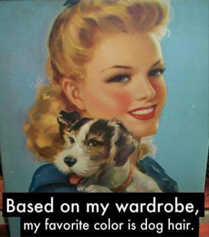 Return to Funny Pictures – 43 Pics