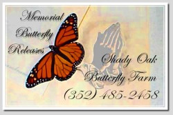 Memorial and Funeral Butterfly Release Poems