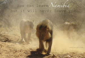 You can leave Namibia, but it will never leave you. Which country has ...