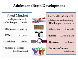 mindset for parents brainology research article books with mindset ...