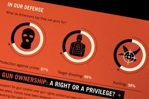 Armed to the Teeth: Gun Ownership in America