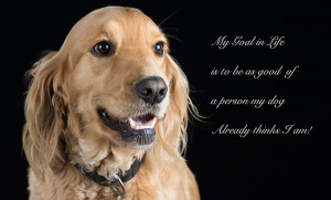 Dog portrait with quote