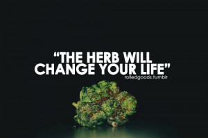 Weed Quotes Quotes · by kei green