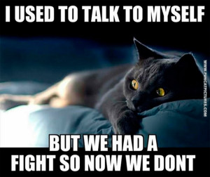funny-cat-pictures-i-used-to-talk-to-myself.jpg