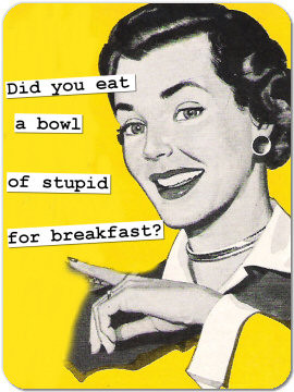 Funny Retro Magnet 26: Did you eat a bowl of stupid?