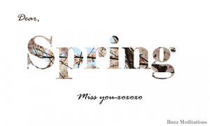 Dear Spring, Miss You ""