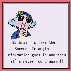 My brain is like the Bermuda Triangle.