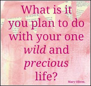 inspirational quote one wild amp precious life