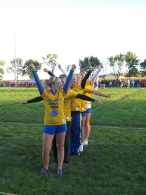 Picture of Diver Football Sideline Cheer Custom T-Shirt Design