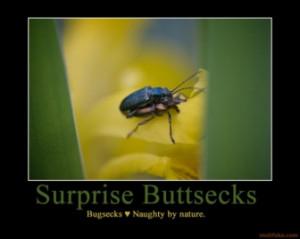 surprise buttsecks buttsecks bugsecks surprise bugs demotivational